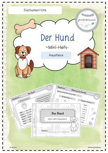 Hund klasse 5 steckbrief Tiersteckbriefe